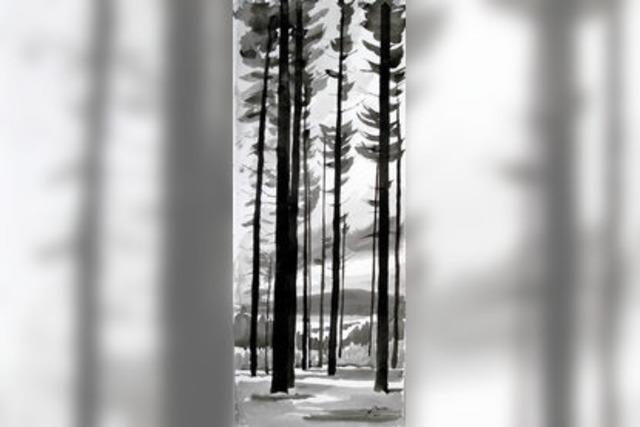 Der Blick auf den Wald