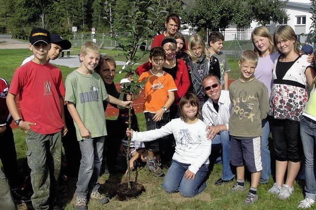 Schüler pflanzten Apfelbäume auf dem TCL-Gelände