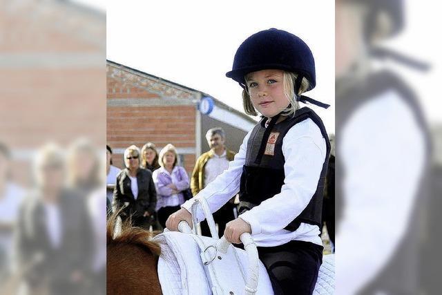 Pferdeliebhaber kamen auf ihre Kosten