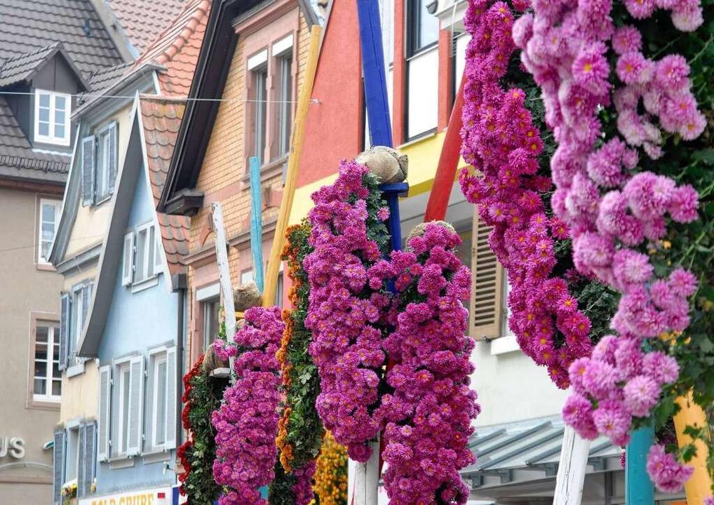 Die Chrysanthema ist eine der größten Blumenschauen Deutschlands.  | Foto: Stadt Lahr_Bamberger