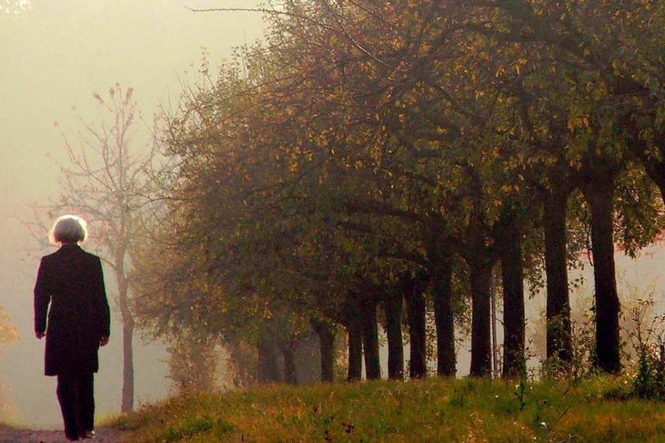 Tipp 1: Raus in die Natur.  UV-Strahlung sorgt dafür, dass unser Körper das Glückshormon Serotonin bildet. Nutzen Sie daher jede Gelegenheit für einen Spaziergang, am besten im Herbstwald. (Foto: Markus Donner)