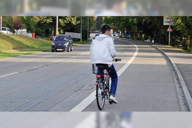 Grüne fordern Fahrradstreifen