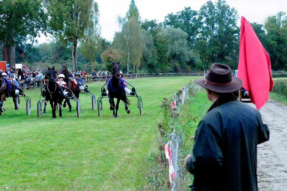 Pferderennen in Meißenheim (Foto: Wolfgang Künstle)