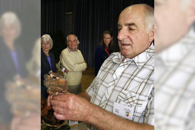 400 Besucher staunen, welche Vielfalt an Pilzen es in der Region gibt