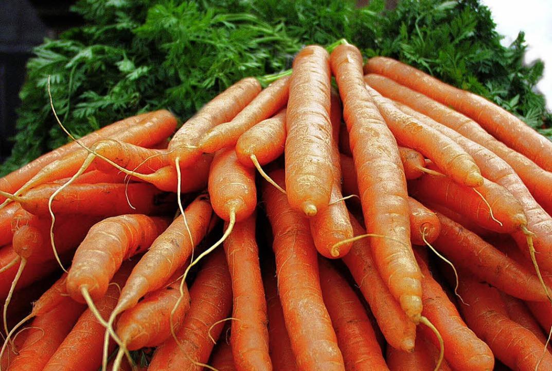 Einkaufstipp: Je oranger die Karotte , desto höher der Karotingehalt   | Foto: schneider