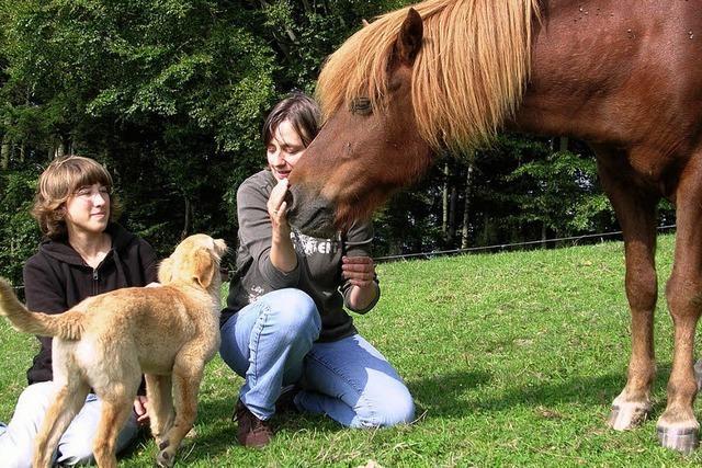 Mit den Tieren artgerecht umgehen