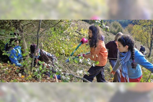 Schulklassen als Naturschutzpaten?