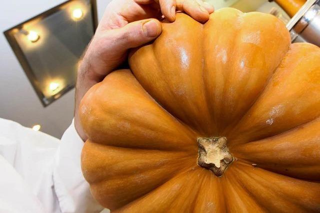 Video: Kürbis süß-sauer – so macht's der Kochprofi