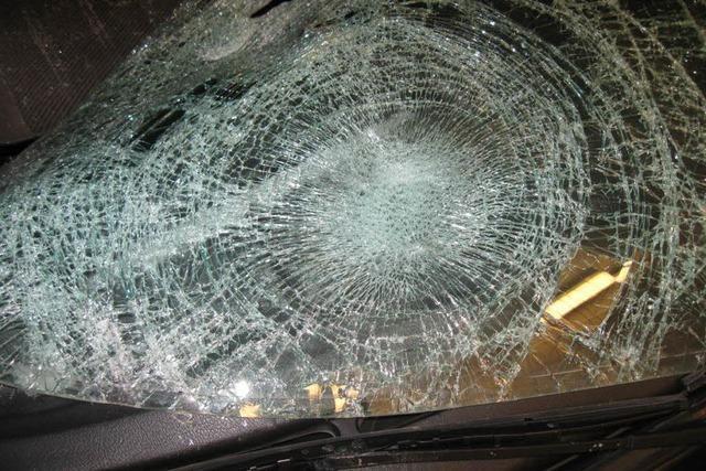 Todesfahrer stellt sich – Haftbefehl außer Vollzug