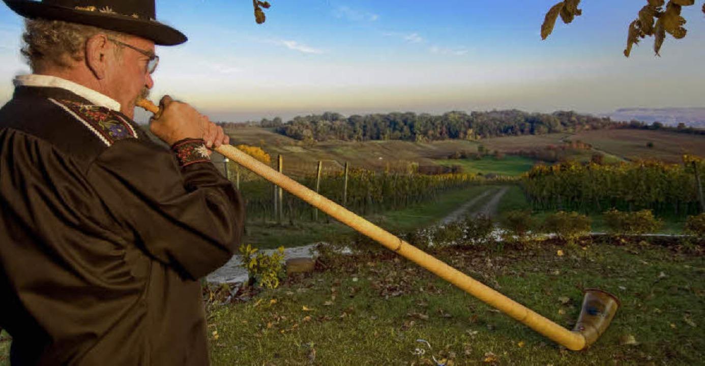 Gaston H.P. Meier spielt Alphorn in den Fischinger Weinbergen  | Foto: Birgit-Cathrin Duval / bcmpress