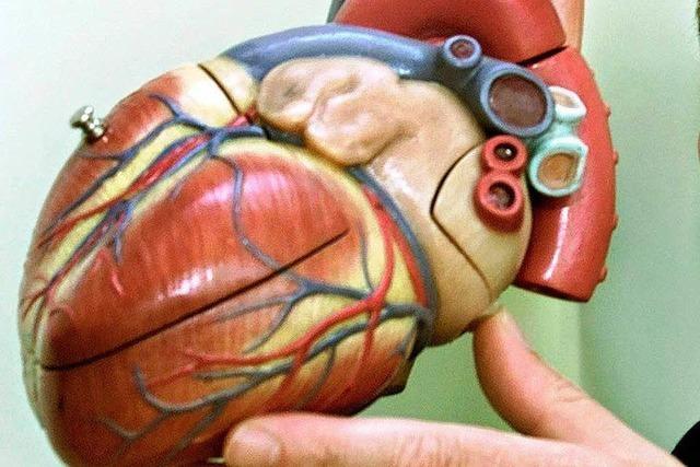 Tag der offenen Tür in der Kardiologie