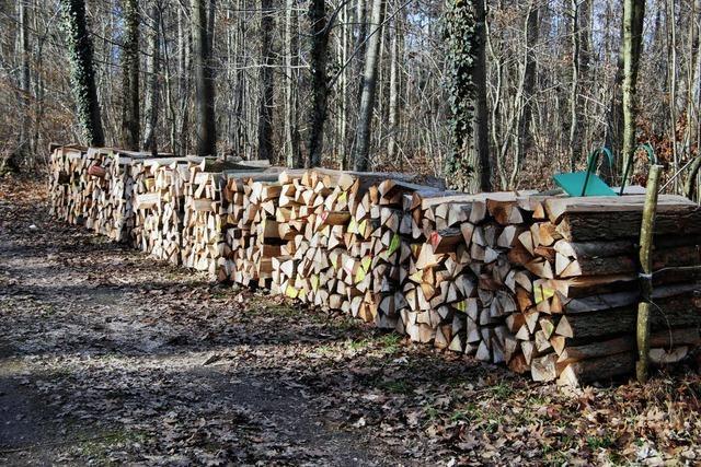 Kein Gewinn im Wald
