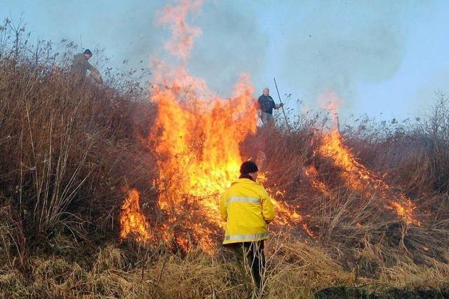 Böschungspflege durch Feuer