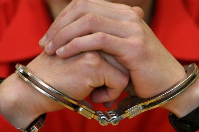 Polizei fasst Serieneinbrecher