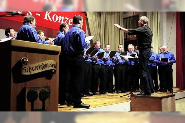 Polka, Pop und Blasmusik