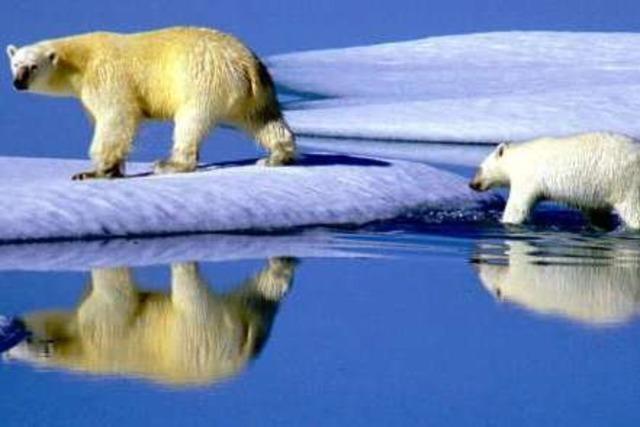 Der Weltklimagipfel in Kopenhagen