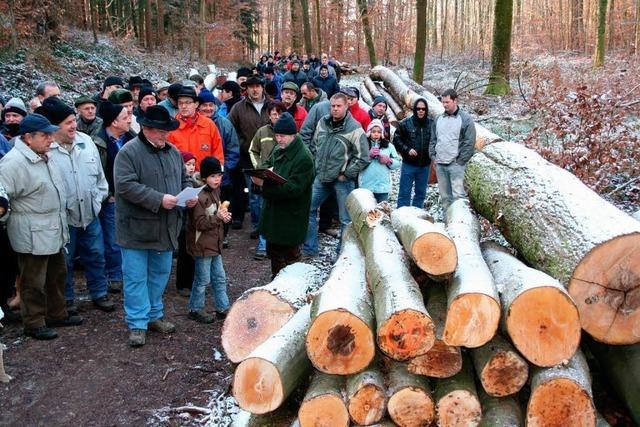 Holzversteigerung wirft einen Gewinn ab