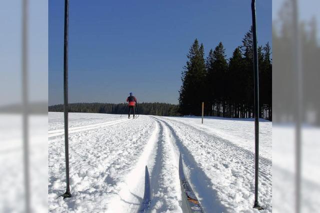 Skilanglauf in St. Märgen