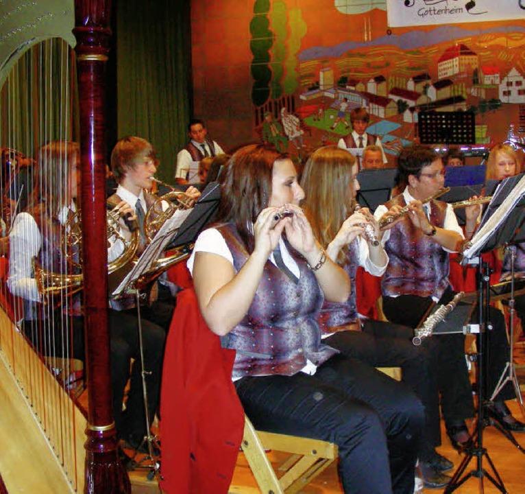 Auch die Harfe erklang im Konzert des ...Lothar Dangel zum Ehrenvorsitzenden.    | Foto: mario schöneberg