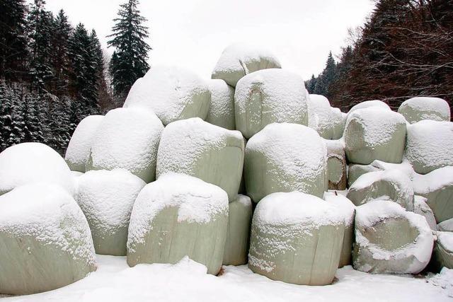 Das Schnee-Chaos blieb aus