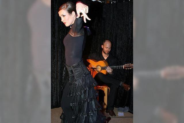 Flamenco zwischen Schnee und Erde