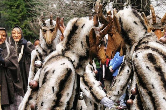 4000 Hästräger werden erwartet