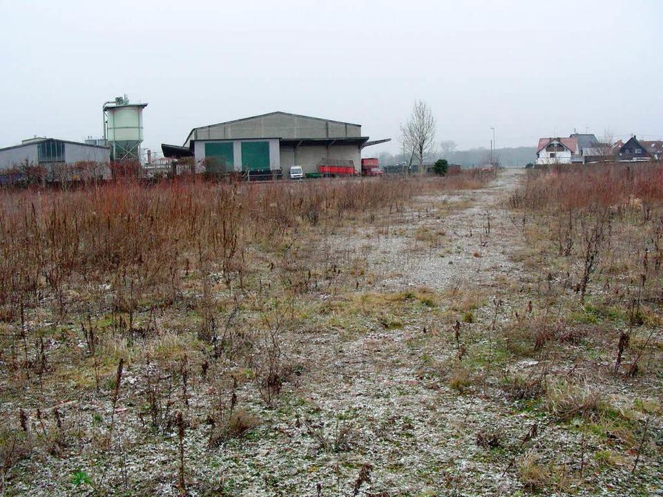 Abgeräumt: das ehemalige Fabrikgelände...r haben drei Hektar Solarmodule Platz.  | Foto: Mario Schöneberg