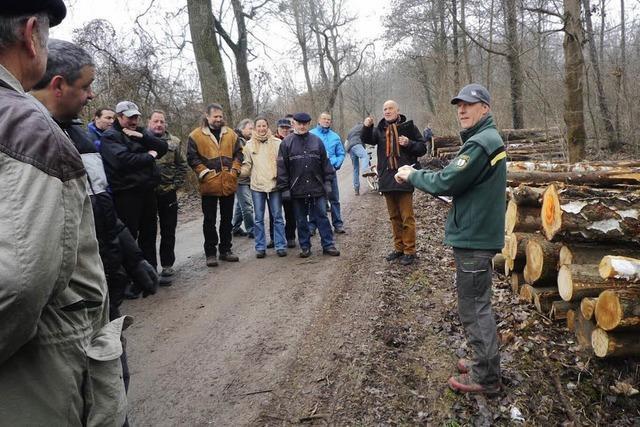 Holz vom Forst ersetzt Heizöl