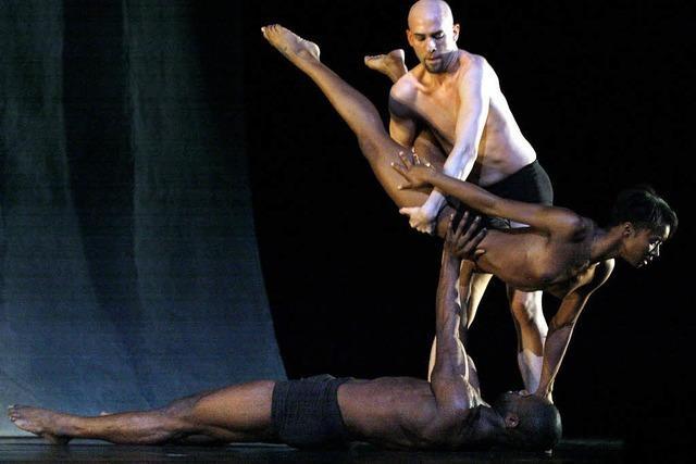 Zwischen Akrobatik und Modern Dance