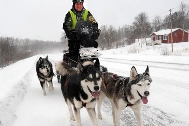 Mit Rad und Hunden auf Weltreise – und auf Stippvisite in Breisach