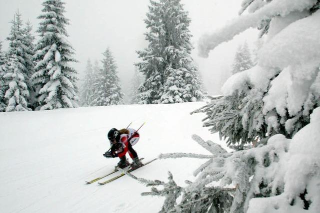 Feldberg: Skifahrern im Wald droht erstmals Bußgeld