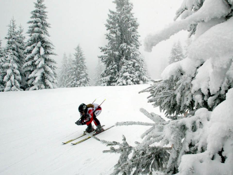 Ski  fahren im Wald wird künftig mit einem Bußgeld bestraft.  | Foto: Patrick Seeger