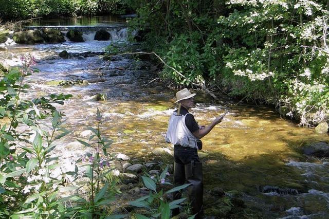 Hege und Pflege der Gewässer stehen im Mittelpunkt