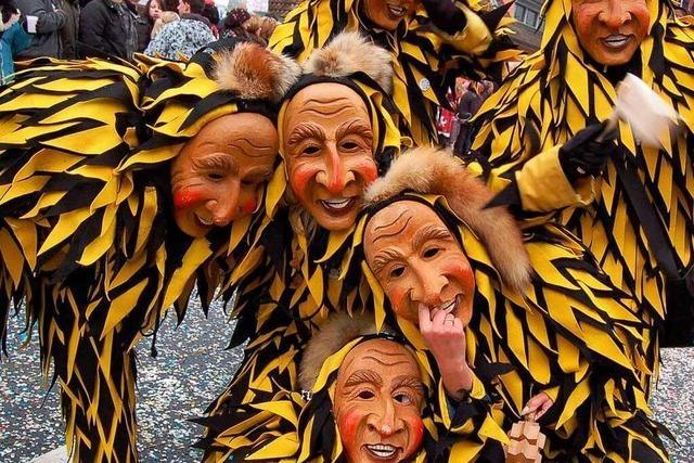 Fotos: Narren feiern in Schwörstadt ein Festival