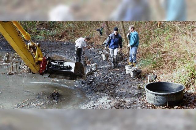 Umweltaktion am BKK-Teich