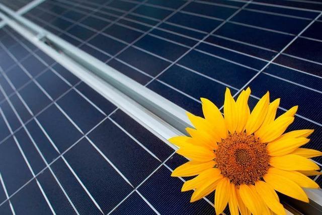Solarförderung wird gekappt