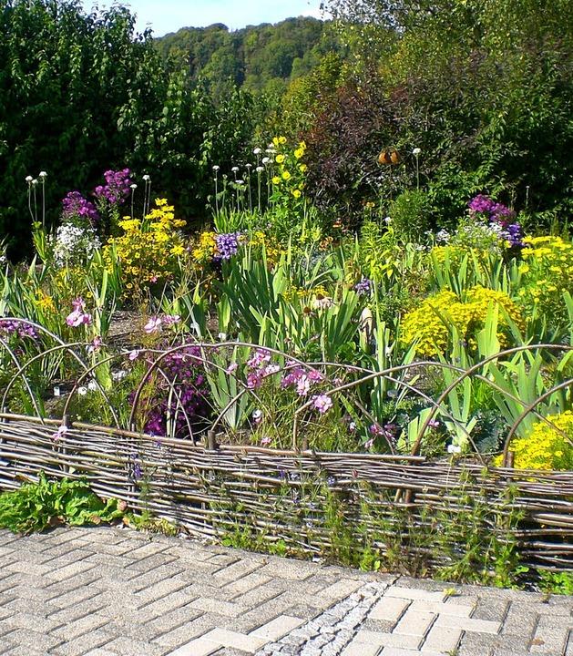 Ein Blick in den Irisgarten des Organisators Fritz Lehmann.   | Foto: BZ