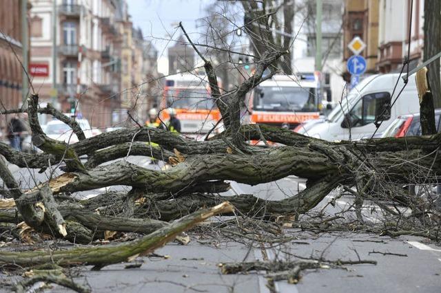 Über 50 Menschen sterben im Sturm – ein Opfer am Feldberg