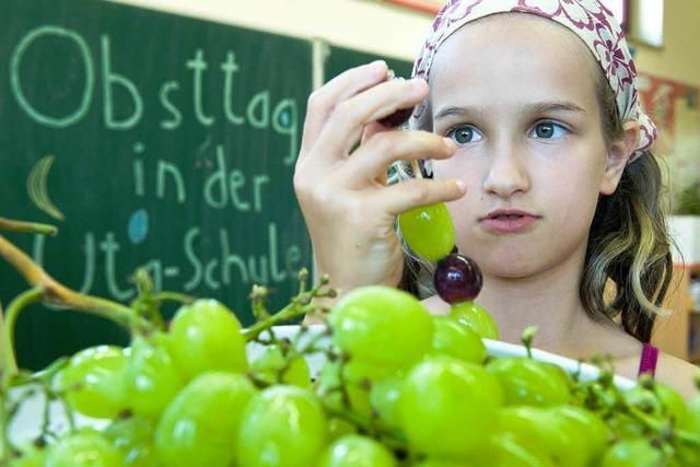 Kein kostenloses Obst an Hochschwarzwälder Schulen