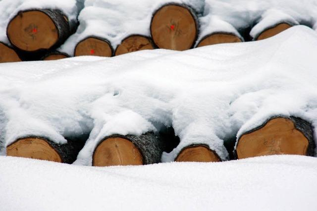 Wald soll 166 700 Euro einbringen