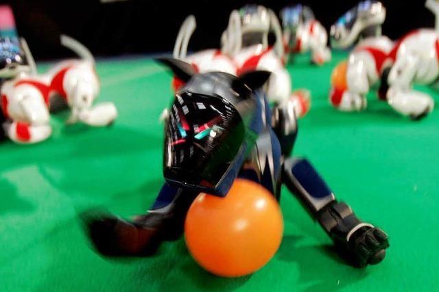 Virtuelle Kicker aus Offenburg bei der Robo-Cup-WM