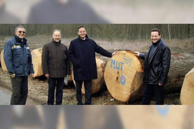 Gutes Holz ist viel wert