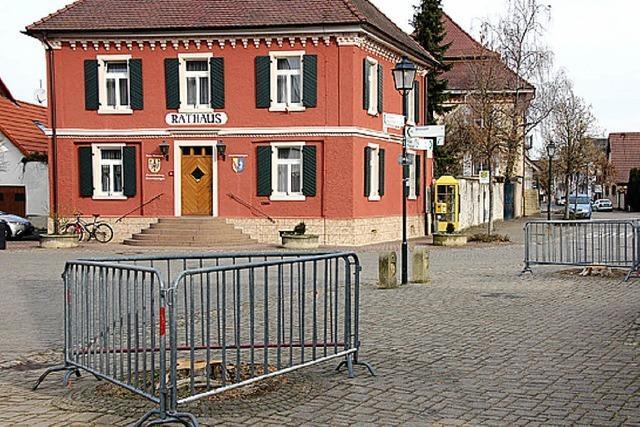 RHEINGEFLÜSTER: Aufregung um gefällte Platanen am Brunnenplatz