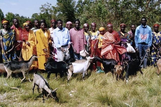 70 Häuser und 200 Ziegen für Afrika
