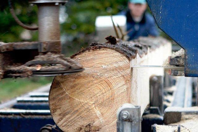 Der Holzmarkt boomt