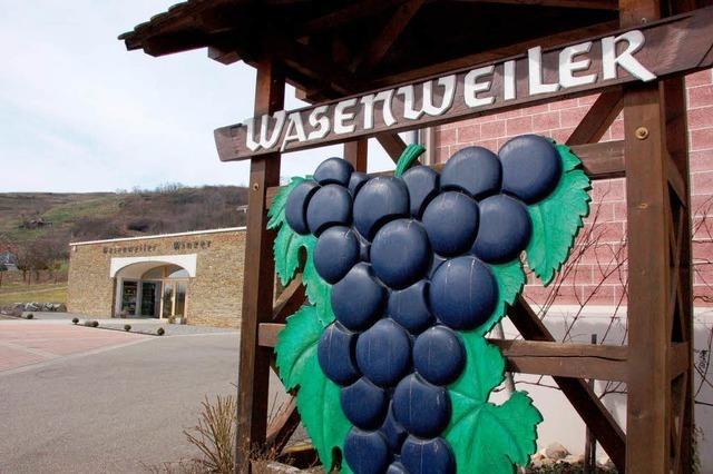 Bei den Wasenweiler Winzern geht es aufwärts