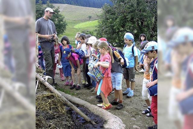 Schule mit Bauernhof und Zirkus