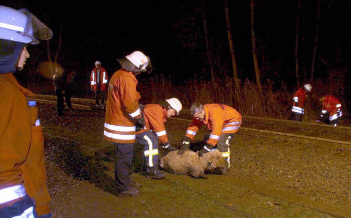 Über Stunden hatten Feuerwehrleute auc...chafe entlang des Bahngleises zu tun.   | Foto: privat