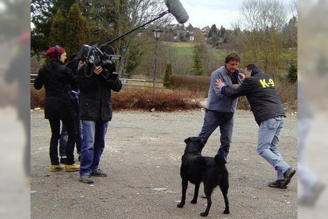 Hunde schützen vor Übergriffen