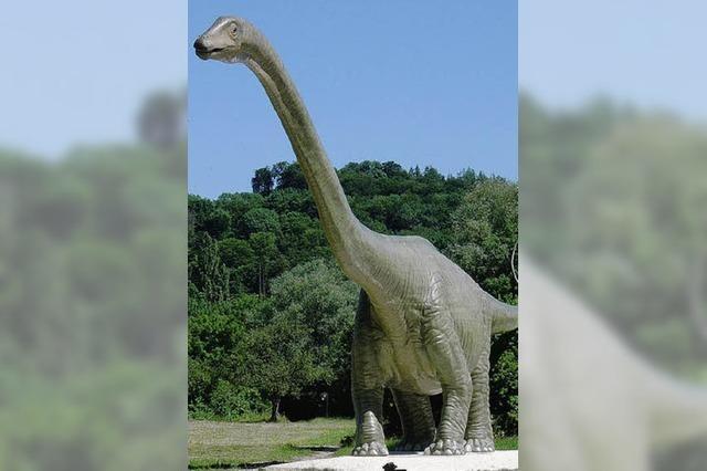 Nicht nur wegen Dino einen Besuch wert